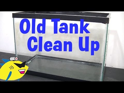 How to clean up an old aquarium for How to clean an old fish tank